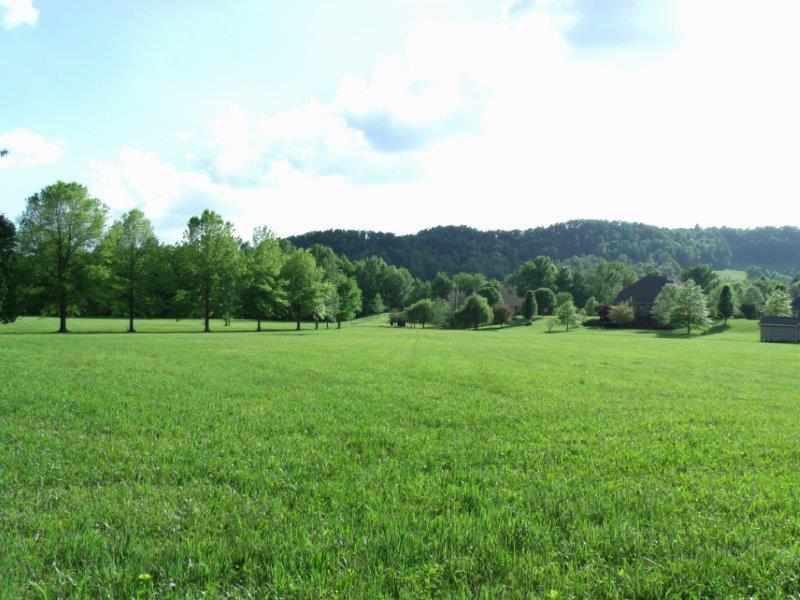 2.95 Acre Lot (View 1)
