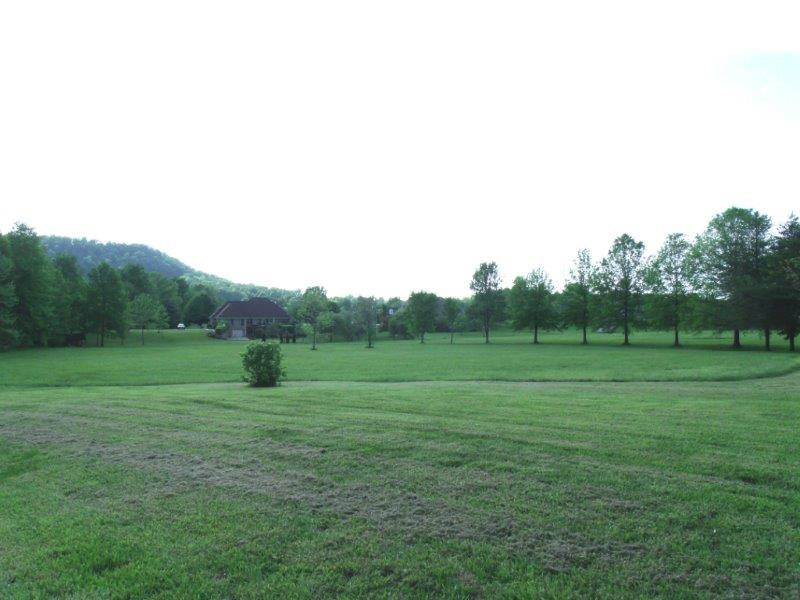 3.38 Acre Lot (View 2)
