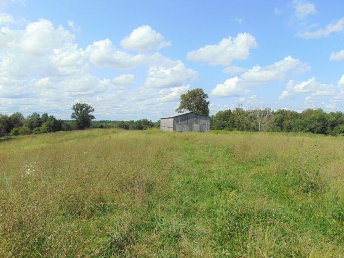 20.624 Acres (+/-) Riley-Gravel Switch Road – Gravel Switch