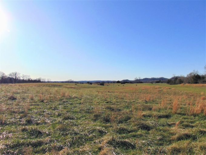 70.768 Acres  (+/-) – Brown Sisters Road – Taylor County
